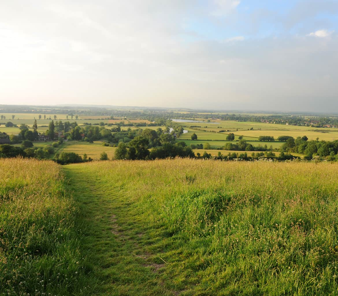 Wallingford Wittenham Clumps