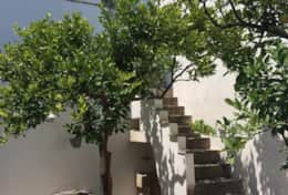 Limoni - inner courtyard to first floor - Spongano - Salento
