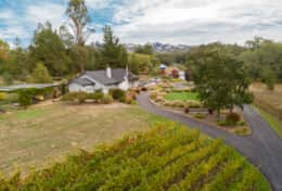 Aerial view above 230 vine hobby vineyard at front gate
