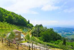 Panorama - Vacation Rentals - Tuscanhouses_ (16)