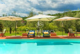 VILLA DE FIORI-Tuscanhouses-Villa with pool close to Florence-Holiday rental099