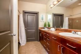 Ensuite Master Bathroom - double vanity - Walk in shower