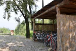 BORGO AJONE 10 - TUSCANHOUSES - VACATION RENTAL (23)