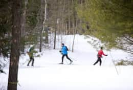 Nearby attraction - Kawartha Nordic Ski Club - 22 minutes