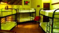 PH Single Bed Shared Dorm FANS