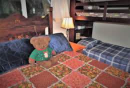 Bunk Room Teddy Bear