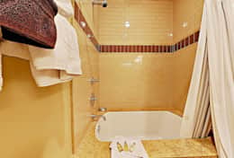 main level shower and tub