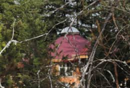 Red top & dome of yurt through the forest