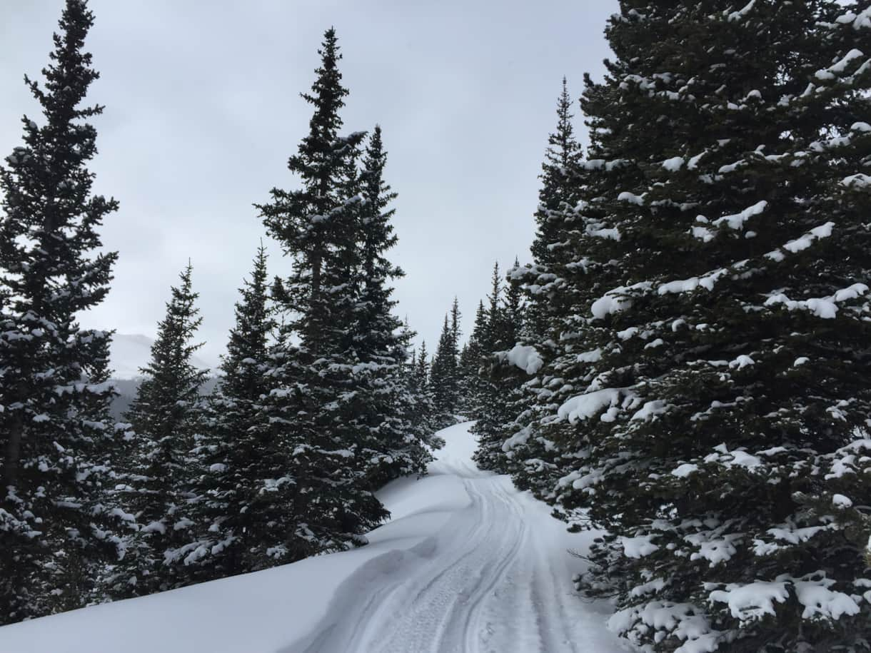 Road to the hut Dec. 2015
