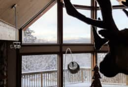 The caribou and the view in winter. Le caribou et la vue en hiver