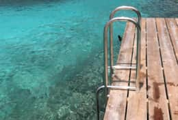 Swim ladder for easy acess