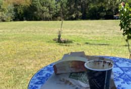 Coffee & Cake on the Lawn