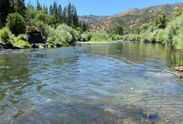 Klamath River Fly Fishing