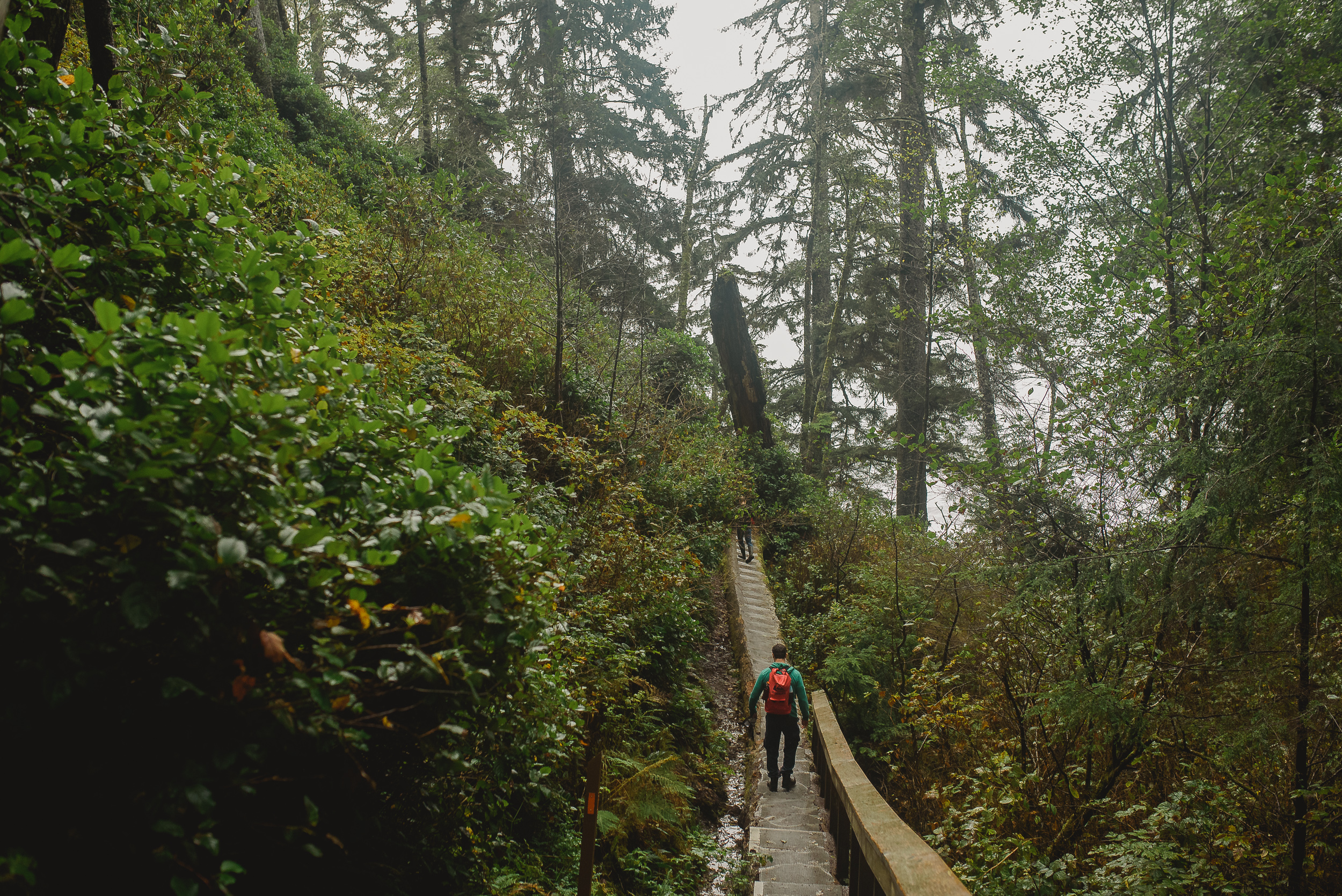 Hiking in Port Renfrew