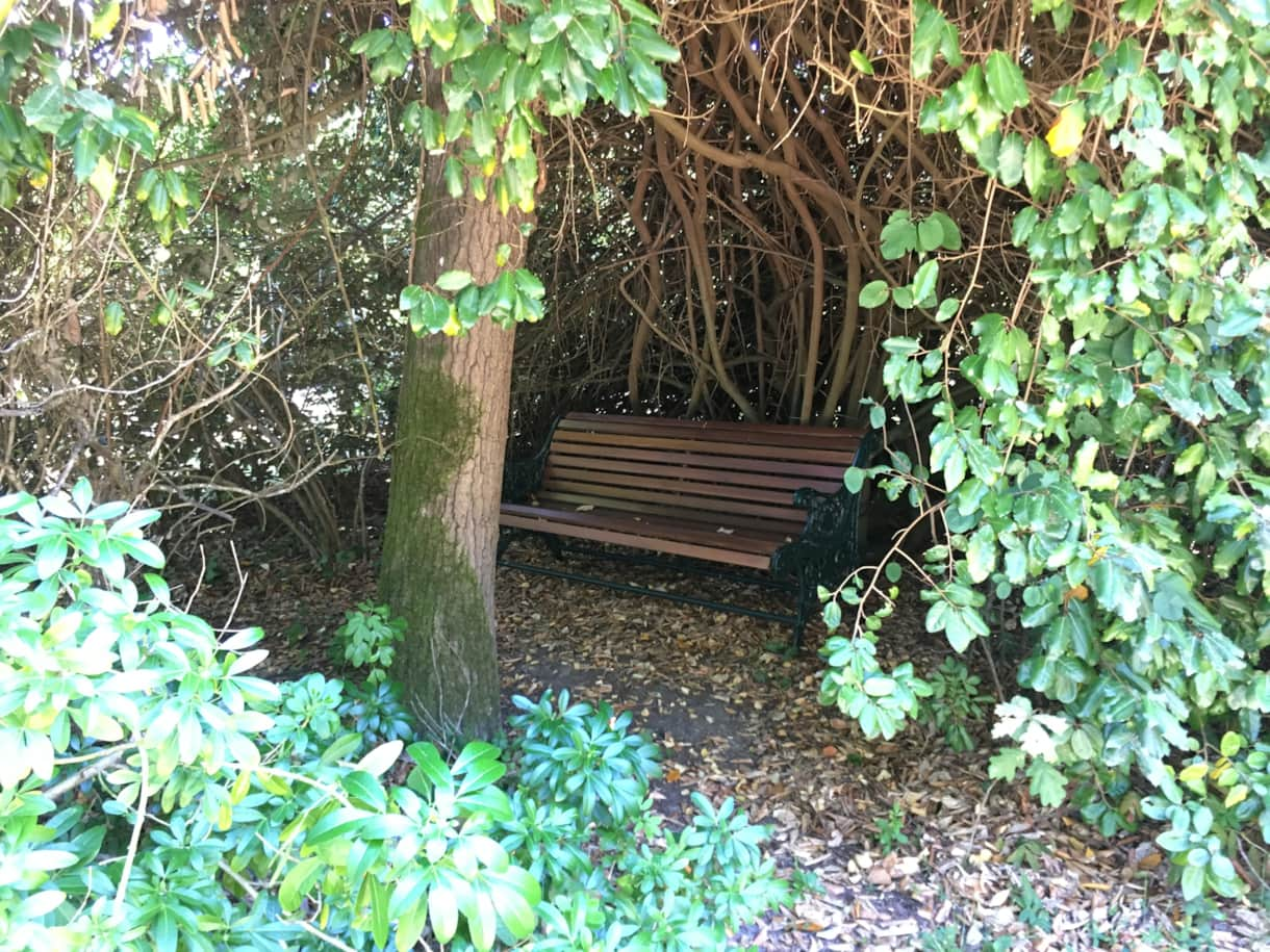The hidden bench