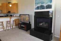 North TV and electric fireplace
