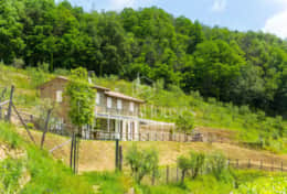 Panorama - Vacation Rentals - Tuscanhouses_ (43)