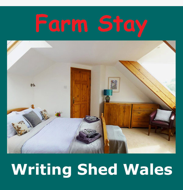 Farm Stay Writing Shed Wales