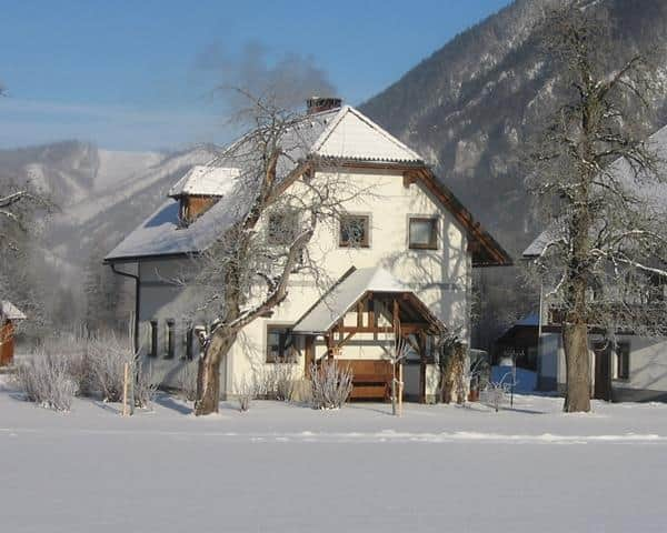 Gausrab Winter