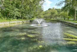 Ponds with Live Fountains - so Peaceful & Fishing too...