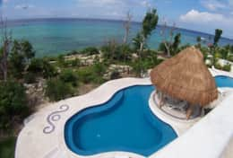 Iguanas pool and ocean views