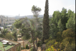 VIEW of Jerusalem Hills