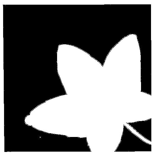 Auró Blanc