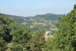 View from Casa Uliveto