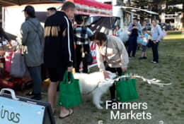 Farmers Markets on Wednesday