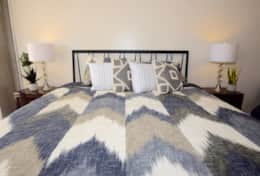 Master bedroom, king bed, balcony access, Roku streaming tv, huge master closet, private bathroom