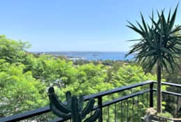 Bellevue Hill executive 1 bedroom apartment