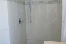 ensuite bath with shower