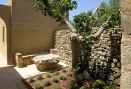 Masseria Ugento - small garden with aromatic herbs - Ugento - Salento