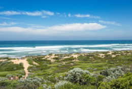 Doesntmatta - Famous Gunnamatta Beach - Good House Holiday Rentals