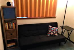 Sitting Area Couch and  Bookshelf