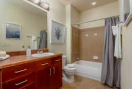 Guest Bathroom - Shower tub combo