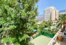 Beautiful views towards the gardens, Martiánez beach and mountains  - Suite Océano