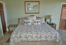 Lower Bedroom with king bed.