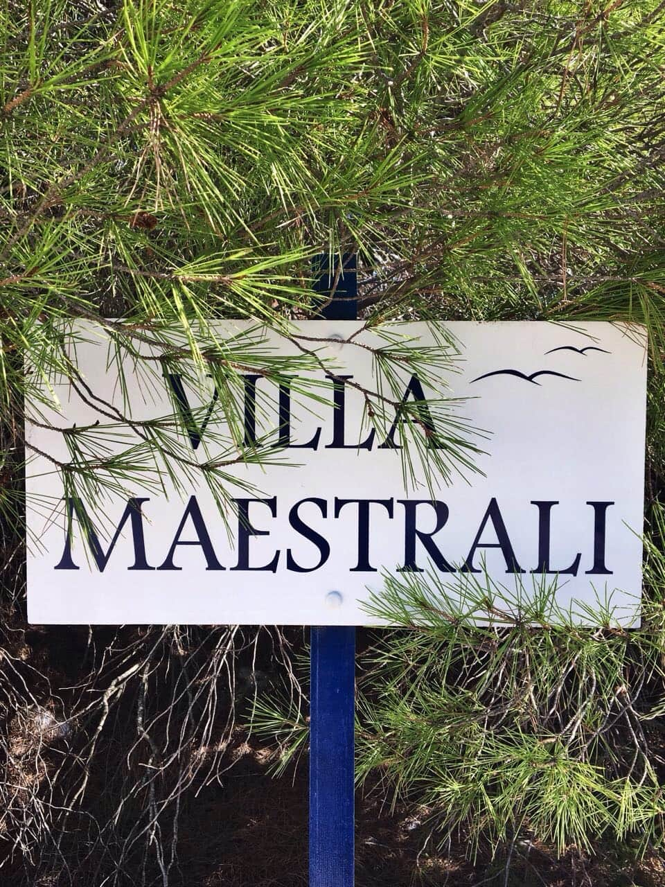 Welcome to Villa Maestrali!