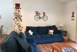 Living Room Christmas 2020