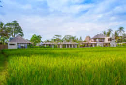 13. Villa Lumia Overview from the Ricefields