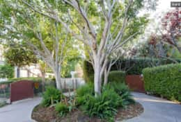 New garden home in Venice | Walk to Abbott Kinney