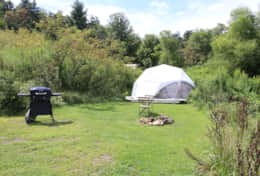 Grassy area in front of dome1 with grill and fire pit