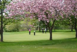 Dunblane Golf course in Spring