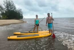 Paddle board available for guest use