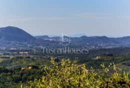 Holidays in Lucca-Villa dell'Angelo-Tuscanhouses -(80)