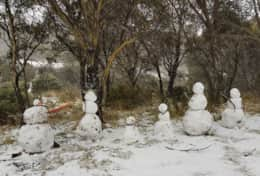 First time to the snow Thredbo