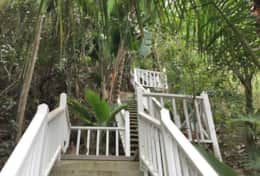 68 steps to Tropical Treehouse