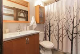 Downstairs Bathroom - Full bath includes bathtub, washer, dryer, iron and ironing board