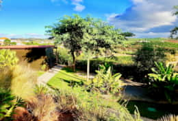 Luxurious algarvian garden at Gato Preto de Silves